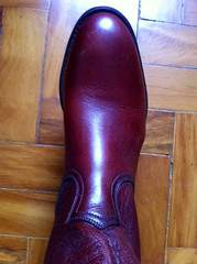 Ropers04 (Suitbr) Tags: cowboy boots roper