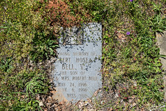 DSC_0274.jpg (SouthernPhotos@outlook.com) Tags: cemetery us unitedstates alabama sumtercounty larrybell browncemetery emelle larebel larebell