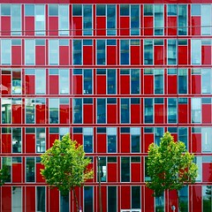 windowsgalore. (time.code) Tags: architecture facade medienhafen