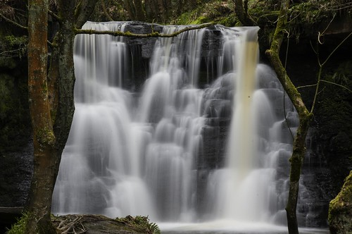 Goitstock Waterfalls, Yorkshire