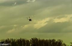 Hlico vu face au dessus de l'Allier. (Crilion43) Tags: france nature eau rivire ciel arbres nuages allier paysage parc vichy auvergne sapin herbe hlicoptre thuya