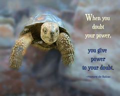 When You Doubt (Lynda Apel) Tags: power quote mindfulness spirituality doubt inspirational consciousness motivational inspirtionalquotes