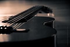 Guitar (Daniel Stroebel) Tags: light music monochrome germany bayern deutschland bavaria licht nikon guitar availablelight naturallight shade musik musicalinstrument lowkey schatten gitarre acousticguitar splittone musikinstrument einfarbig solidcolor natrlicheslicht akustikgitarre vorhandeneslicht teiltonung d7000