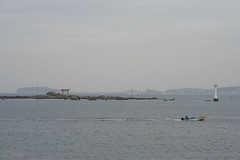 20160424-DSC_8910.jpg (d3_plus) Tags: sea sky fish beach nature japan nikon scenery diving daily snorkeling  28105mmf3545d nikkor  kanagawa hayama     dailyphoto  apnea  thesedays  28105    28105mm skindiving  zoomlense     28105mmf3545 d700 281053545 nikond700 aiafzoomnikkor28105mmf3545d 28105mmf3545af   aiafnikkor28105mmf3545d