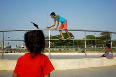 @ Marina Beach, Chennai, 2016 (bmahesh) Tags: street people india beach kids marinabeach chennai ricohgr tamilnadu cwc chennaiweekendclickers wwwmaheshbcom