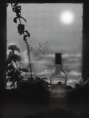 Moonlight fantasy : An experiment. (biswarupsarkar72) Tags: fantasy creativephotography