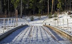 Person (ri Sa) Tags: bridge trees winter snow ice finland person helsinki