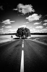 And then, pass through the Gate of Trees... (Vanvan_fr) Tags: road trees sky blackandwhite bw france nature clouds countryside photo gate noiretblanc line route ciel arbres porte gr nuages campagne touraine