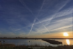 _MG_0241 (Wil de Boer Photography --> Dutch Landscape and Ci) Tags: landscape wildlife leest leekstermeer canon5dmarkii canon1740mmf40 onlanden wwwfacebookcomwildeboerphotography wwwwildeboerphoto