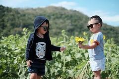 """ยูว์ จู ซุก และ กวิน แต ฮา ... พบพวกเค้าได้กับ ซีรี่ แห่ง ปี """"พี่ ดอก มั้ย"""" ละครดีดูช่องนั้น"""