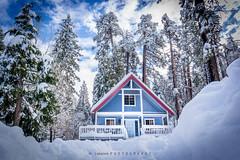 The Blue House (lekanne2020) Tags: california trees winter house snow snowstorm snowfall snowscape bigbear winterscape bigbearmountain elnio bigbearcalifornia elnioweather