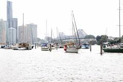 Brisbane River boat moorings (Photos by Lance) Tags: bridge colour water skyline boats cityscape waterfront outdoor brisbaneriver brisbanecity moorings storeybridge caso bradfieldhighway botanicgardensboatmoorings