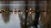il ritorno delle paperotten (albi_tai) Tags: reflection water river mirror reflex ticino nikon fiume uccelli d750 movimento acqua riflessi luce fila specchio riflesso mosso lungaesposizione 21100 sommalombardo lte fiumeazzurro panperduto tempilunghi albitai nikond750
