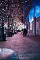 Tokyo Life_Xmas_33_2014 (Pop_narute) Tags: street light people japan night tokyo couple illumination