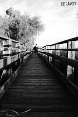 Black and white.... (lella 92) Tags: sardegna blackandwhite sun nature colors landscape landscapes pond tramonto sardinia natural sunsets special passion tramonti sole colori sassari sets bianconero catwalk stagno sardigna stagni stagnodiplatamona naturasarda paesaggisardi sardinelcuore sardegnaalmare sardegnaofficial