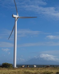 Savannah and I have crossed the next border. There was a wait to get into Costa Rica, and I had to buy a bus ticket to prove I was going somewhere, but we're in. This is the last shot from Nicaragua, huge wind farm along the south-west coast of Lago Nicar