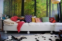 Astcias decorativas para fazer o teu gatinho ainda mais feliz (utilidades_casa) Tags: casa gatos tapete animais decorao sof mantas salo almofadas ideias cestos casadebanho astcias