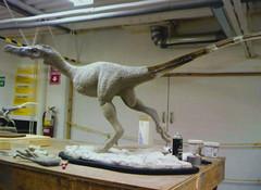 DUA_3295r (crobart) Tags: art museum club dinosaur meeting mineral scarborough gem paleontological