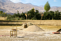 Harvested wheat field, Tashkurgan (inchiki tour) Tags: travel mountains highway village snapshot uighur xinjiang silkroad karakoram kkh  uyghur traveling tajik centralasia  pamir   2015 tashkurgan  taxkorgan karakoramhighway tashkorgan