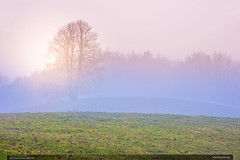Vchod slunce (jirka.zapalka) Tags: morning trees winter fog sunrise landscape czech pasture rano krajina beskydy mlha leskovec