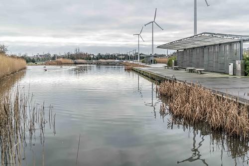 Wind Powered Public Park In Clongriffin Dublin [Father Collins Park]-110952