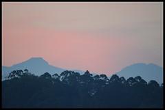 Dawn (Indianature st2i) Tags: india sunrise dawn december tea tamilnadu morningsky westernghats teaestate 2016 2015 valparai indianature anamalais indiragandhiwildlifesanctuary anamallais anamalaitigerreserve