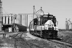 Belmont (glenn_cunningham) Tags: railroad ontario fall classic power motive 2015 osr gmd shortline funit