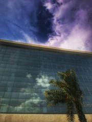 mirage (Rodrigo Alceu Dispor) Tags: sky cloud tree matrix tile square reflex pattern mirage glitch