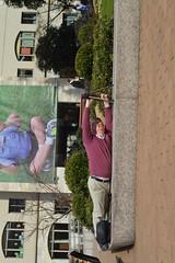 Hanging down! taken by Manami (Mana.mii) Tags: topsyturvy