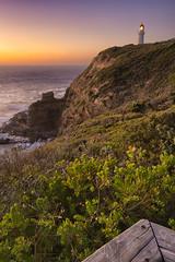 The Schanck (Pat Charles) Tags: ocean pink sunset sea sky lighthouse color colour beach water evening nikon rocks outdoor dusk australia melbourne victoria depthoffield bluehour morningtonpeninsula hdr flinders capeschanck lookoout