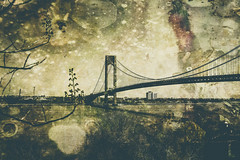 Verrazano-Narrows Bridge (Erin Cadigan Photography) Tags: auto road city nyc newyorkcity bridge newyork tower horizontal architecture brooklyn river outdoors bay harbor daylight traffic suspension steel bluesky cable double structure deck transportation transit toll vehicle mta borough daytime hudson statenisland span narrows roadway verrazano verrazanonarrows fortwadsworth