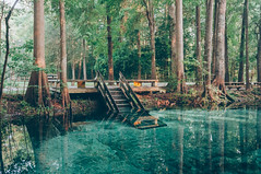Devils Spring System (J. Parker Natural Florida Photographer) Tags: morning camping water stairs swimming landscape spring florida outdoor stairway waterscape northflorida highsprings ginniesprings devilseye floridaspring devilsear santeferiver acquifer springhunters