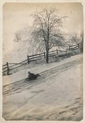Child sledding down a snowy road (simpleinsomnia) Tags: old winter white snow motion black monochrome vintage found blackwhite kid child antique snapshot photograph sledding vernacular foundphotograph
