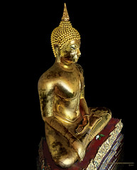 Pra Wat Po (anatxm) Tags: gold bangkok buddha adobe po illustrator wat anat staue krungthep cs5 moolmuang