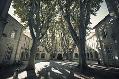 On the side @  Avignon (sunnybille) Tags: trees france canon frankreich innenhof patio arbres avignon bume perspektive 2015 lichtundschatten lightsandshadow ombreetlumire ontheside plantane