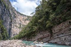 _DSC2586 (Jorge De Silva R) Tags: nature rio de la photo adventure venta caon chiapasmexico fotografiadenaturaleza