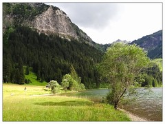 Am Vilsalpsee (almresi1) Tags: lake mountains tree austria alpen ufer bergsee schatten busch felsen tannheimertal vilsalpsee