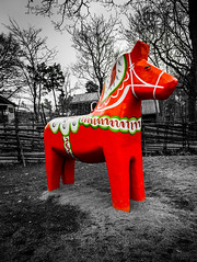 Swedish Dala Horse (King Grecko) Tags: red blackandwhite contrast sweden stockholm traditional culture skansen coloursplash lightroom dala 24105 dalahorse canon5dmk3