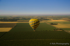 Up in the air (kds_photo) Tags: california bluesky napa hotairballoon orchards sacramentovalley