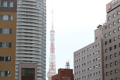 IMG_8819 (justia1006) Tags: japan canon tokyo   6d 70200f4 is