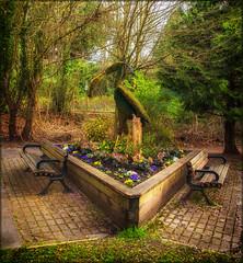 Heron Park (Martin Smith - Having the Time of my Life) Tags: canada green bc surrey crescentbeach springflowers hbm martinsmith southsurrey heronpark happybenchmonday nikkor2485mmf3545gedvr nikond750 martinsmith