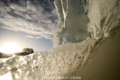 IMG_0134 copy (Aaron Lynton) Tags: beach canon big barrel wave 7d spl makena shorebreak lyntonproductions