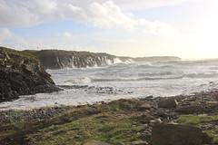 IMG_8338 (DaveGifford) Tags: ireland spanishpoint wildatlanticway