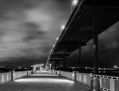 Mount Pleasant Pier Under Ravenel Bridge (Ms Stacy) Tags: longexposure bridge blackandwhite bw monochrome night southcarolina charleston ravenel nightpics 2016