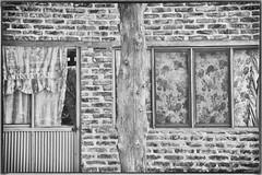 Post Mortem (Maria Sciandra) Tags: blackandwhite texture facade mexico urbanexploration sanmigueldeallende weathered brickwork mariasciandraphotography nikond7200