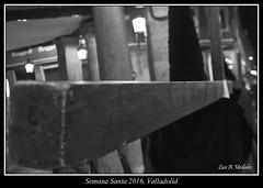 La nmero 6 (Luis Alfonso Urdiales) Tags: espaa spain nikon valladolid cruz semanasanta castilla penitente castillaylen d90 lunessanto nikond90 semanasantavalladolid procesindelsantsimorosariodeldolor cofradapenitencialdelasantaveracruz luisalfonsourdiales semanasanta2016 semanasantavalladolid2016