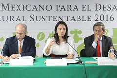 2a Sesin Ordinaria 2016 (Consejo Mexicano) Tags: caf rural cafe desarrollo romero mexicano mely sociales consejo organizaciones campecinos subsecretaria cmdrs