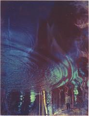 Mind Waves (Maija Karisma) Tags: nature polaroid instant expired pola expiredfilm peelapart polaroid180 iduv littlebitbetterscan