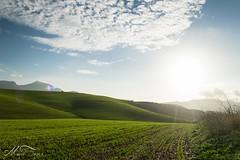 Landscape-1-2 (Mario_TT) Tags: espaa sun verde sol beauty landscape photography photo spain nikon paisaje fotografia malaga photooftheday nikonistas d5300