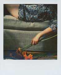 I'm still here (~ Meredith ~) Tags: sx70 still waiting dream here april 2016 tailfeather polaroidweek sarahwinman 1212project marvellousways